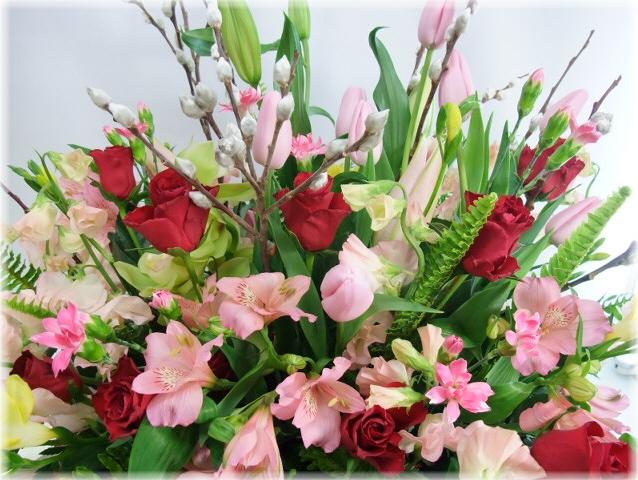 2月の誕生花
