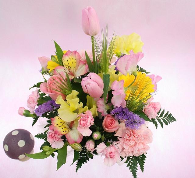 2 月 誕生 花 2月の誕生花と花言葉カレンダー - 誕生花・花言葉辞典