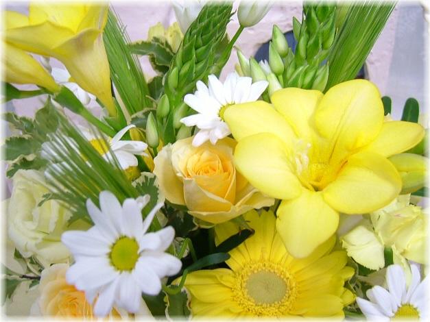3月の誕生花