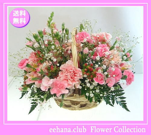 5月の誕生花