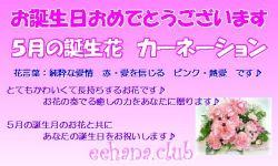 5月の誕生花バースデーカード