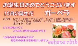 10月の誕生花バースデーカード
